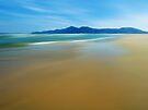 Stunning Shore by David Alexander Elder