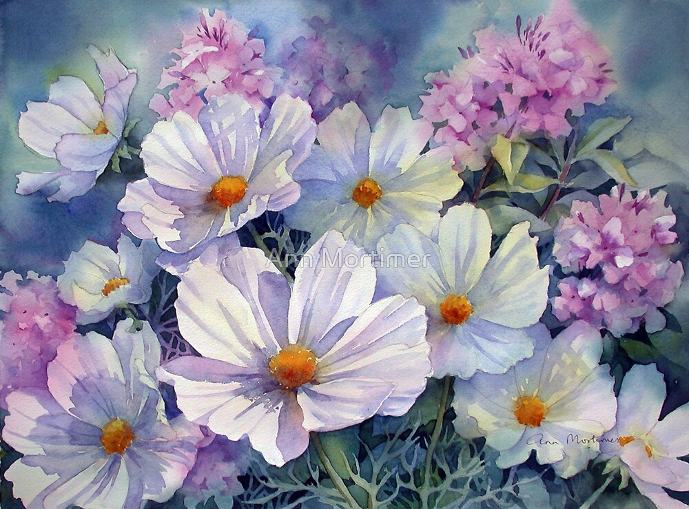 Cosmos and Phlox by Ann Mortimer