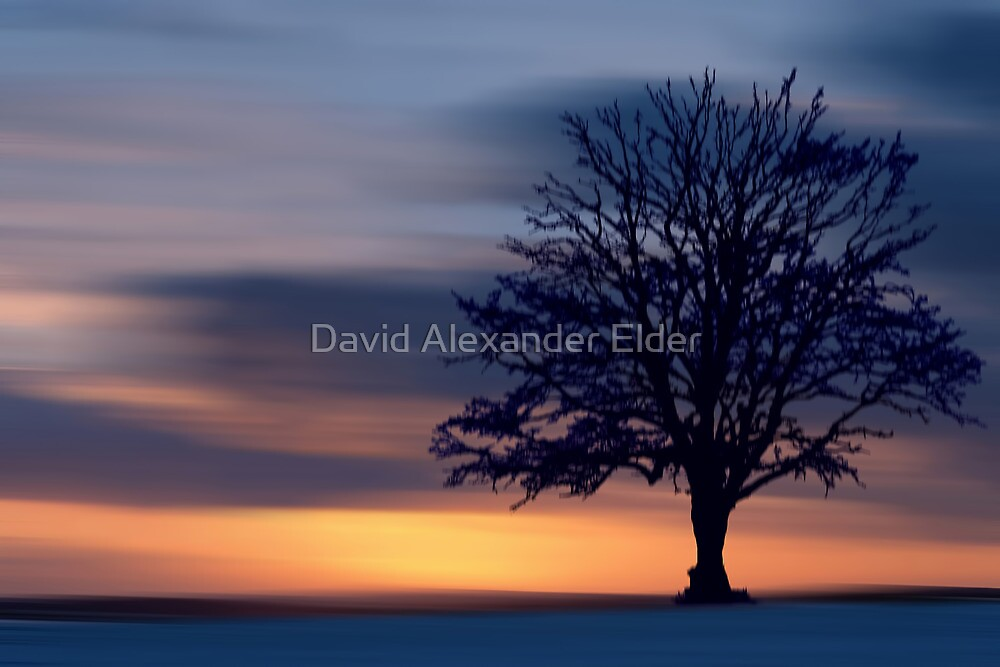Winter's Night by David Alexander Elder