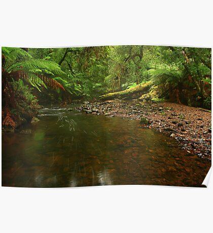 .... a creek near Garths Poster