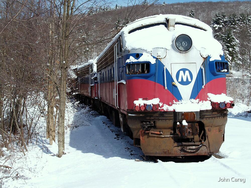 The Polar Express by John Carey