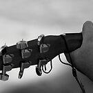 Strings by Lynn  Gibbons