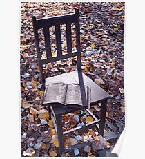 Chair - Hepburn Springs  Poster