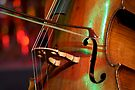 Double Bass by Extraordinary Light