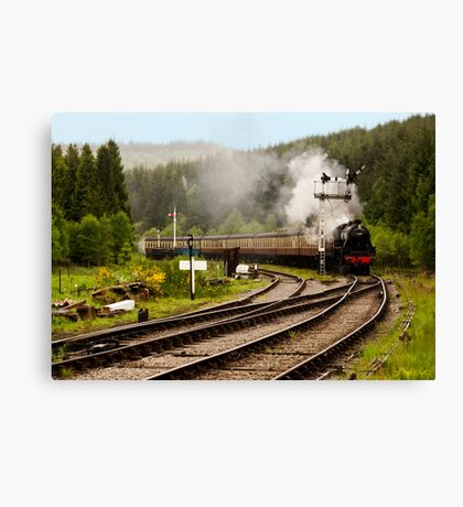 The Train Arriving Canvas Print