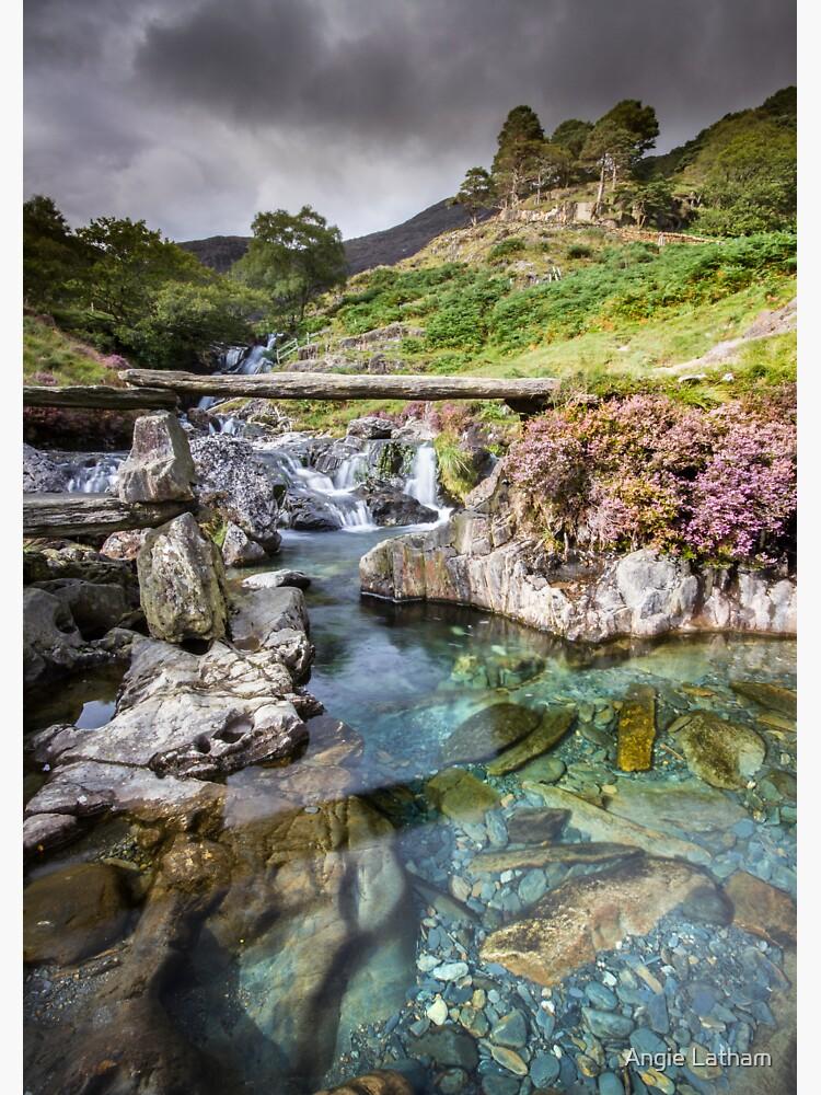 Snowdonia - The Watkin path to Snowdon by AngelaBarnett