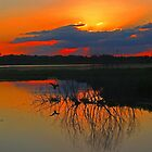 Florida Magical Sunset! by jozi1