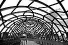 Webb Bridge by Renee Hubbard Fine Art Photography