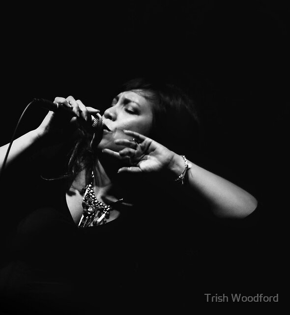 The Jazz Singer by Trish Woodford