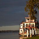 Ps Marion  by Dave  Hartley