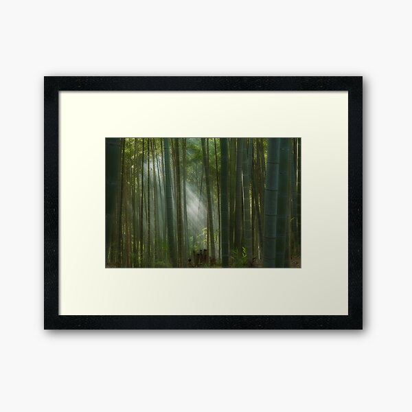 The mystic bamboo forest of Kyoto, Japan Framed Art Print