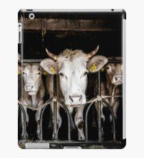 Cows! iPad Case/Skin
