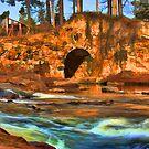 Horse Creek - Graniteville, SC by Randall Faulkner