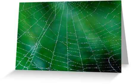 Matrix On Green by Gene Walls