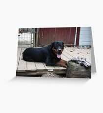 Rocko And YES I AM A Puppy Greeting Card