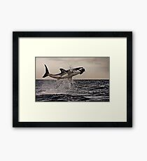 Air Jaws Framed Print
