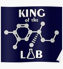 King of the Lab VRS2 Poster
