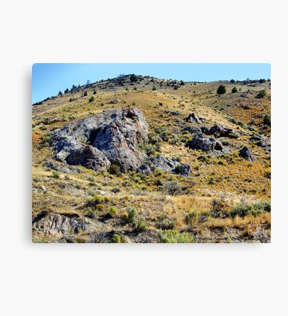 There's Gold in Them Thar' Hills Canvas Print