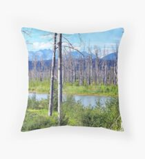 6 Years After the Fire Throw Pillow