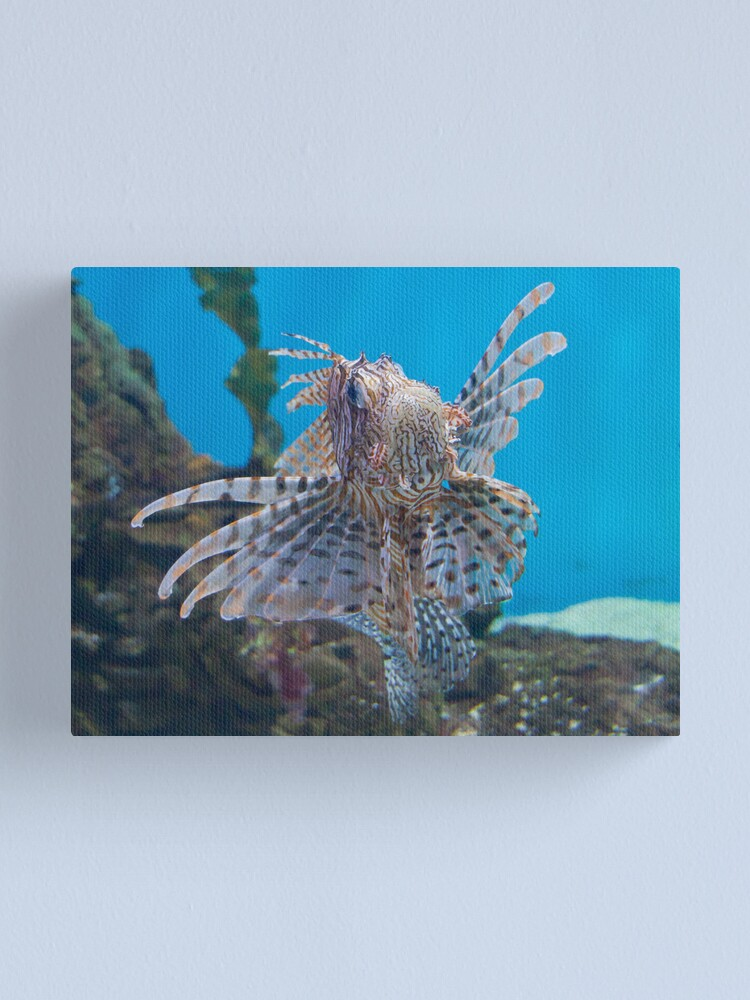 Alternate view of Fish in a Tank Canvas Print