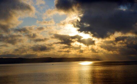 Welsh Sunburst by 7-2521