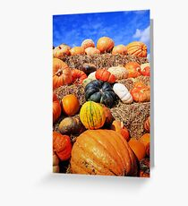 Colorful pumpkins  Greeting Card