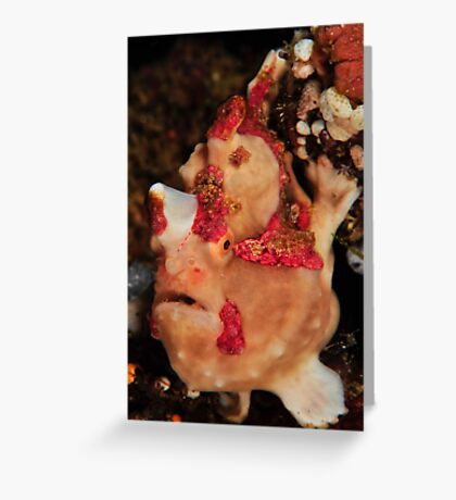 Warty  Greeting Card