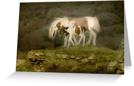 Watch with Mother by Catherine Hamilton-Veal  ©