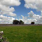 Countryside, Ireland by JoeTravers