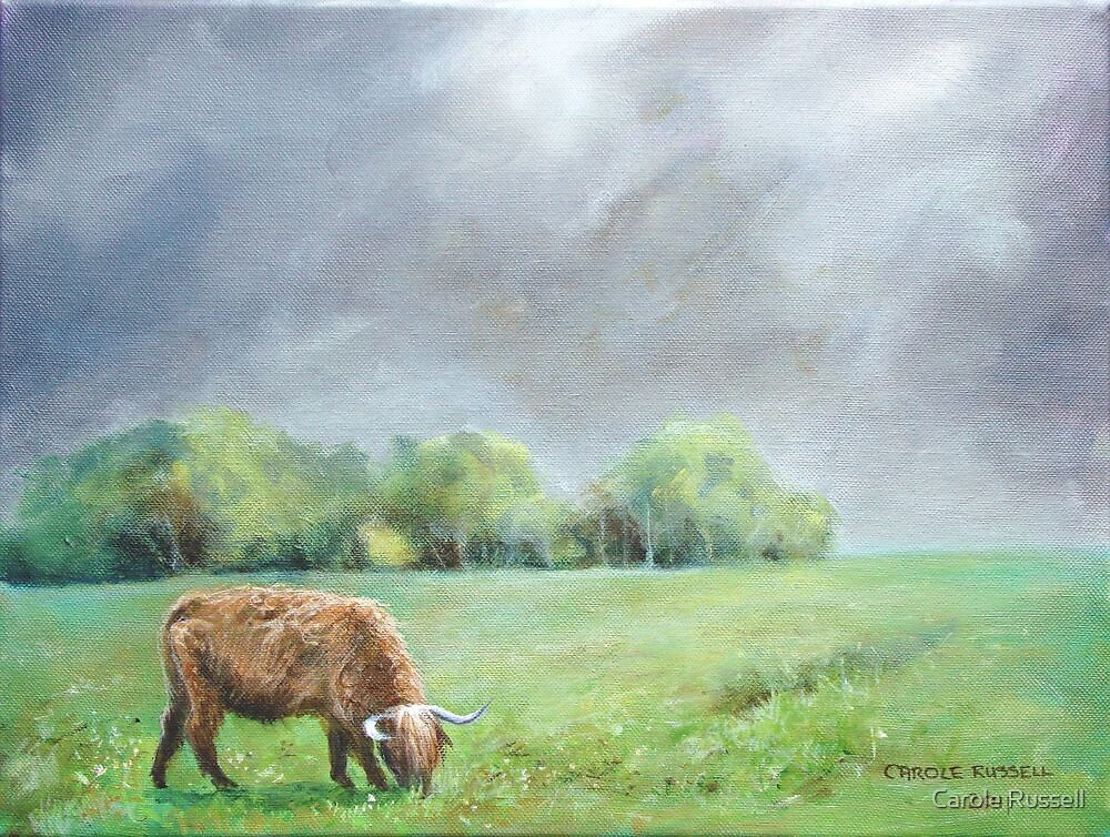 Big hairy cow (what storm??) by Carole Russell