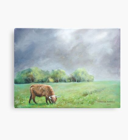 Big hairy cow (what storm??) Metal Print