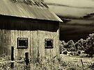 Roadside Barn  by Marcia Rubin
