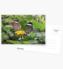 Fluttering By Postcards