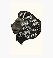 Lions don't lose sleep over the opinions of sheep Photographic Print