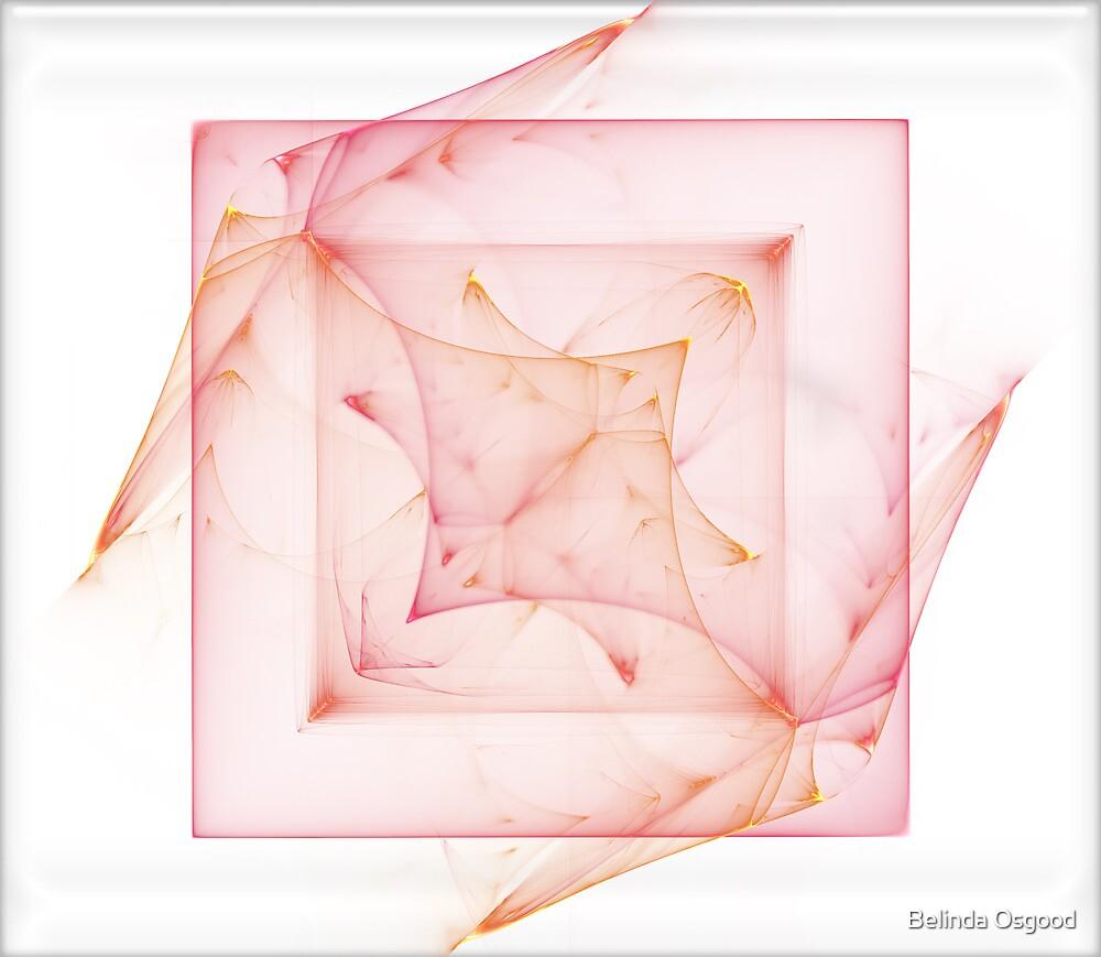 Xray Box by Belinda Osgood