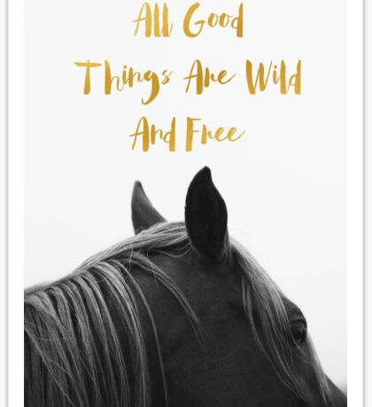 All Good Things - Horse Sticker