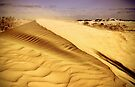 """""""Shifting Sands"""" by Heather Thorning"""