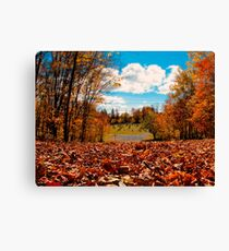 Fall Autumn Time – Orange Leaf Covered Path to Rural Graveyard w/ Cross & Depth of Field Canvas Print