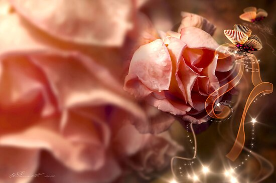 Peach Roses and Ribbons by Svetlana Sewell