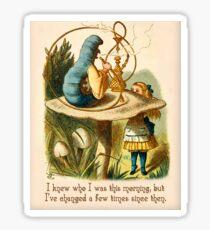 Alice in Wonderland Quote -  I Knew Who I Was - Caterpillar Quote - 0235 Sticker