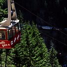 Airtram at Hell's Gate by MaluC