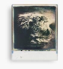 mammal Canvas Print
