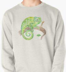 Swirly Chameleon Pullover