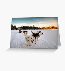 Grand Nord Greeting Card