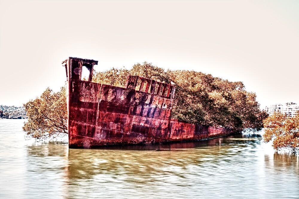 Shipwreck - Homebush Bay, Sydney. by elspiko