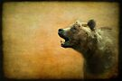 The call of the brown bear - textured by steppeland