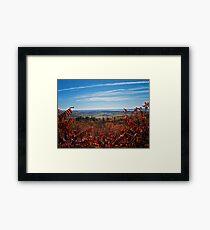 Fall Autumn Countryside viewed through a Red Leaf Bush under a Blue Sky Framed Print