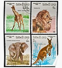 Collection of wild animals stamps. Poster