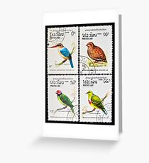 Collection of birds stamps. Greeting Card