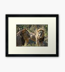 A powerful coaltion of two !(Common let`s go bro!) Framed Print